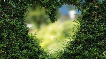 6 moduri in care iti poti transforma frica in iubire