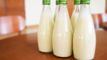 Carnea si lactatele- produse de care nu avem nevoie, dar cu care avem o relatie de dependenta
