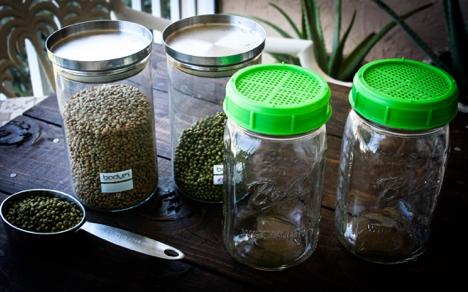 Motivele pentru care m-am hotarat sa consum germeni si