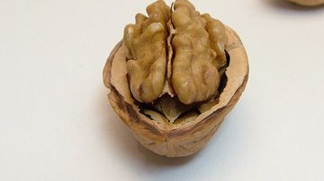 Consumul anumitor alimente poate duce la micsorarea creierului. Afla care sunt acestea