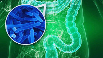 Antibioticele puternice impiedica dezvoltarea de noi celule ale creierului
