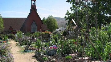 Permacultura, stilul de viata autonom al comunitatii viitorului