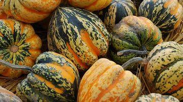 10 alimente bogate in potasiu si beneficiile oferite de acest nutrient extrem de necesar