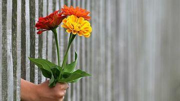 Cum iti dai seama cand cineva te iubeste (chiar daca nu o spune)