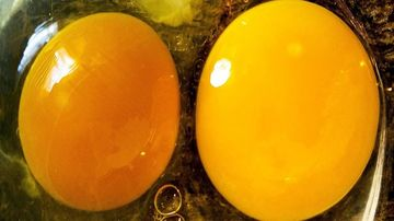Cum poti depista alimentele alterate, indiferent de ce iti spune data expirarii