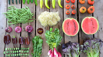 Victoria Boutenko : pasi catre hrana vie
