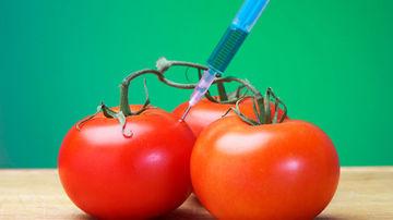 Ce sunt de fapt organismele modificate genetic?