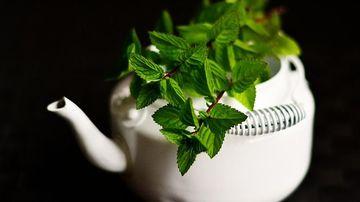 Remedii naturale pentru ameliorarea durerilor de stomac
