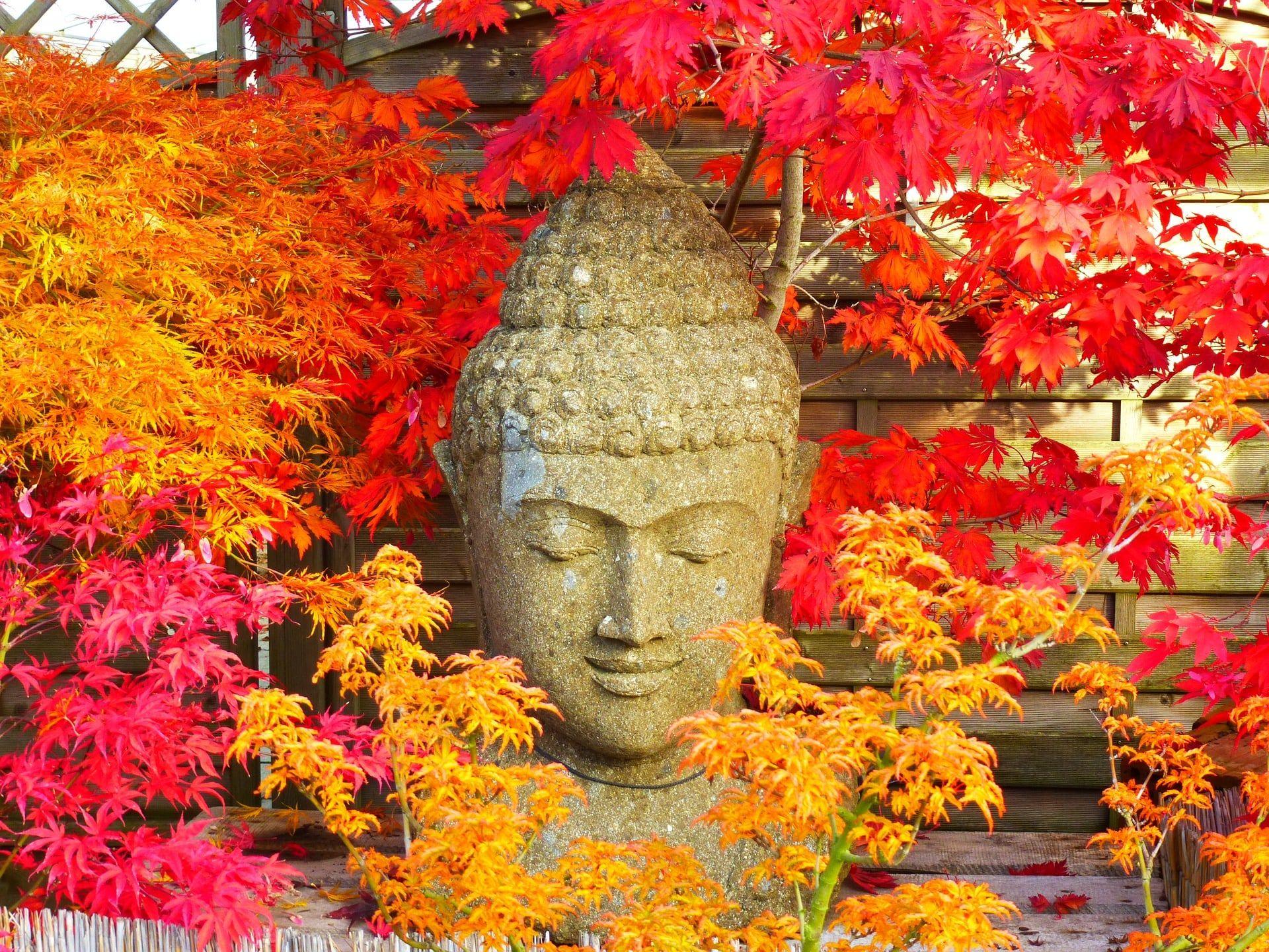 meditatie, mindfulness, beneficii