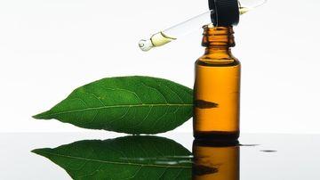 Uleiul esenţial pur de dafin, un ulei polivalent adjuvant in menţinerea sănătăţii
