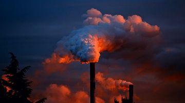 5 suplimente alimentare care protejeaza corpul de poluarea severa a aerului
