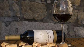 Ce efect are consumul de alcool asupra creierului