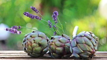 Anghinarea, o planta cu beneficii importante pentru ficat si bila