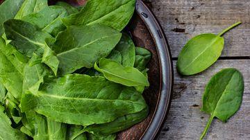Reteta Monster Pops – delicatesa cruda si verde pentru mofturosi