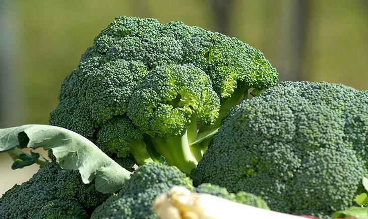 broccoli stimuleaza creativitatea