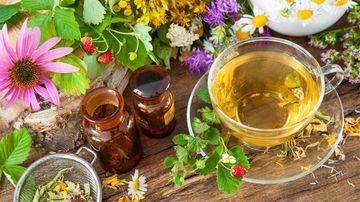 Terapia Florala Bach – Puterea vindecătoare a naturii