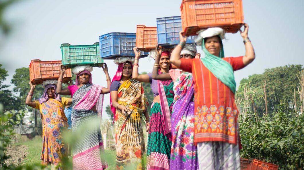 agricultori parteneri Organic India