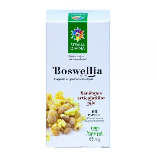 Boswellia 500mg,  60 capsule | Steaua Divină