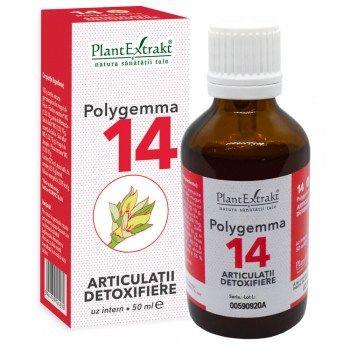 POLYGEMMA Nr.14 (Articulații - Detoxifiere), 50ml   Plantextrakt