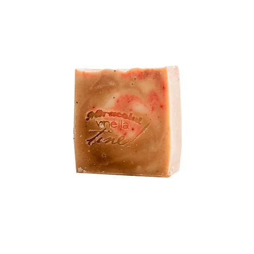 Șampon Solid Regenerant, 120g | Techir