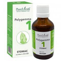 POLYGEMMA Nr.1 (Stomac), 50ml | Plantextrakt