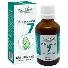 POLYGEMMA Nr.7 (Căi urinare), 50ml | Plantextrakt